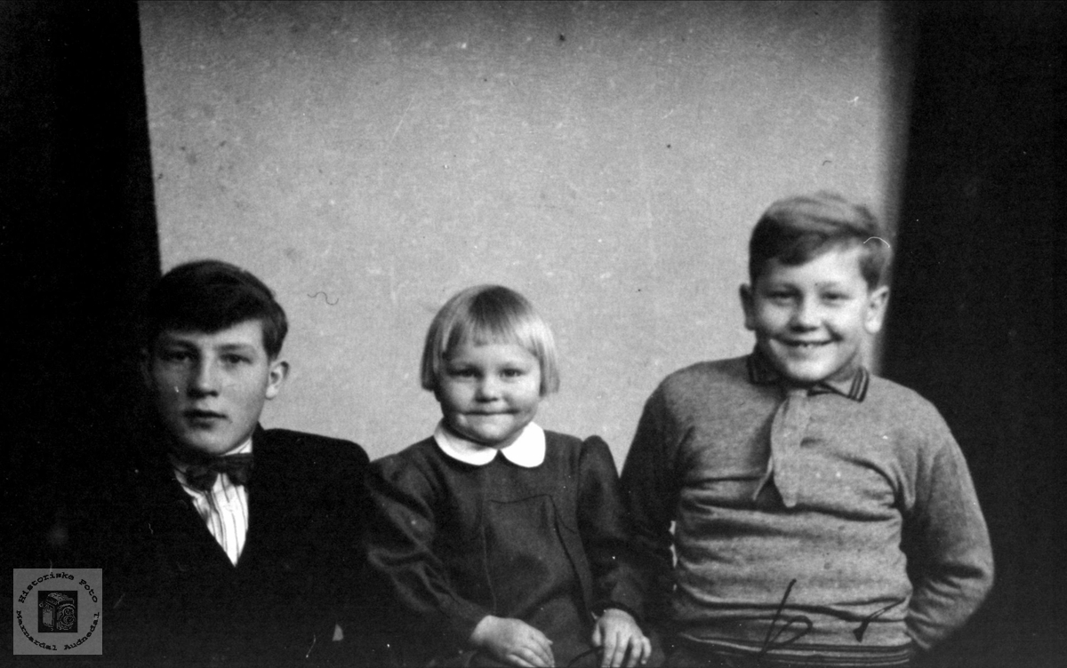 Søsknene Harald, Åse Ingebjørg og Knut Åge Birkeland Øyslebø.