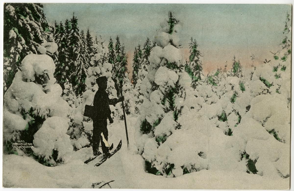 Kolorert postkort. Skiløper i skogen med snøtunge trær.