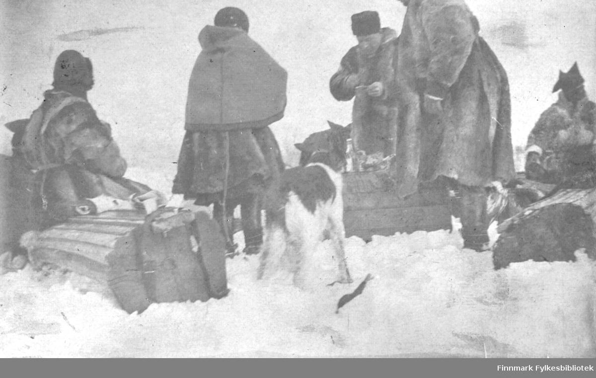 Aimjoknesset,1916. Samer i pesk med karakteristisk samisk lue. En hund står i forgrunnen. Matrast i snøen.