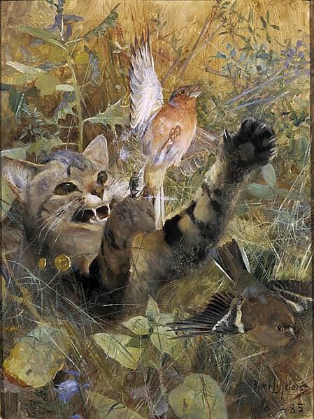 Katt och bofink. En av fem djurstudier i samma ram, NM 2223-2227