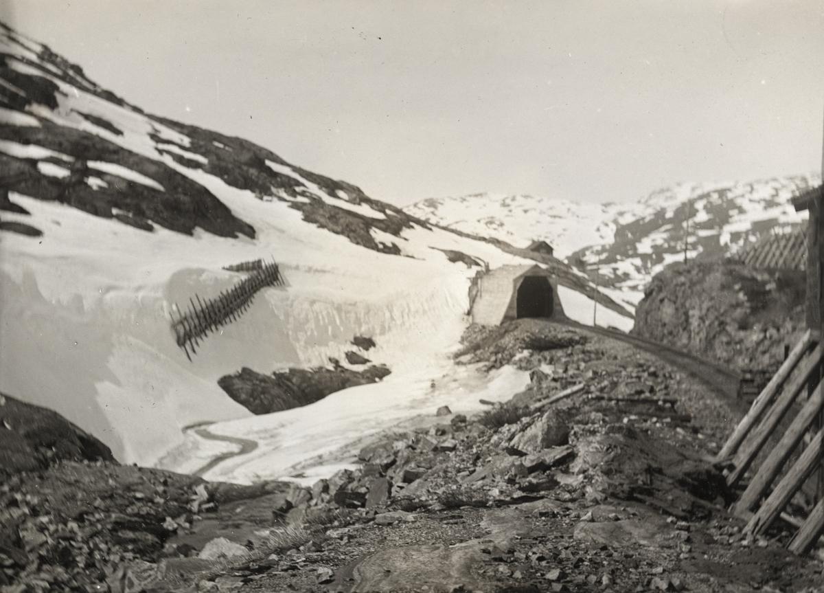Bergensbanen nær Sæltuft, mellom Hallingskeid og Myrdal. Bildet illustrerer snøskjermenes funksjon.