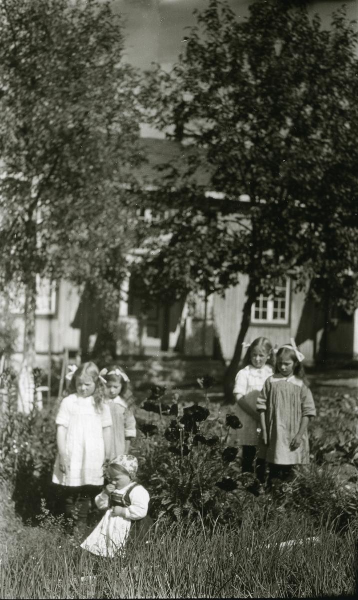 5 småpiker i hagen utenfor Jons, Galåsen. Sittende foran: Elfrid Galaasen g. Busk (31/5 1919). Stående bak, fra venstre: nr. 1 og 3: Grambakkjentene (?); Else Galaasen g. Bekken og Marte Galaasen g. Myklebø (døtre av Einar Galaasen, Jons). Nr. 2 og 4: Maalfrid Galaasen g. Hauge (21/2 1914) og Ingebjørg Galaasen g. Buflod (19/5 1915)