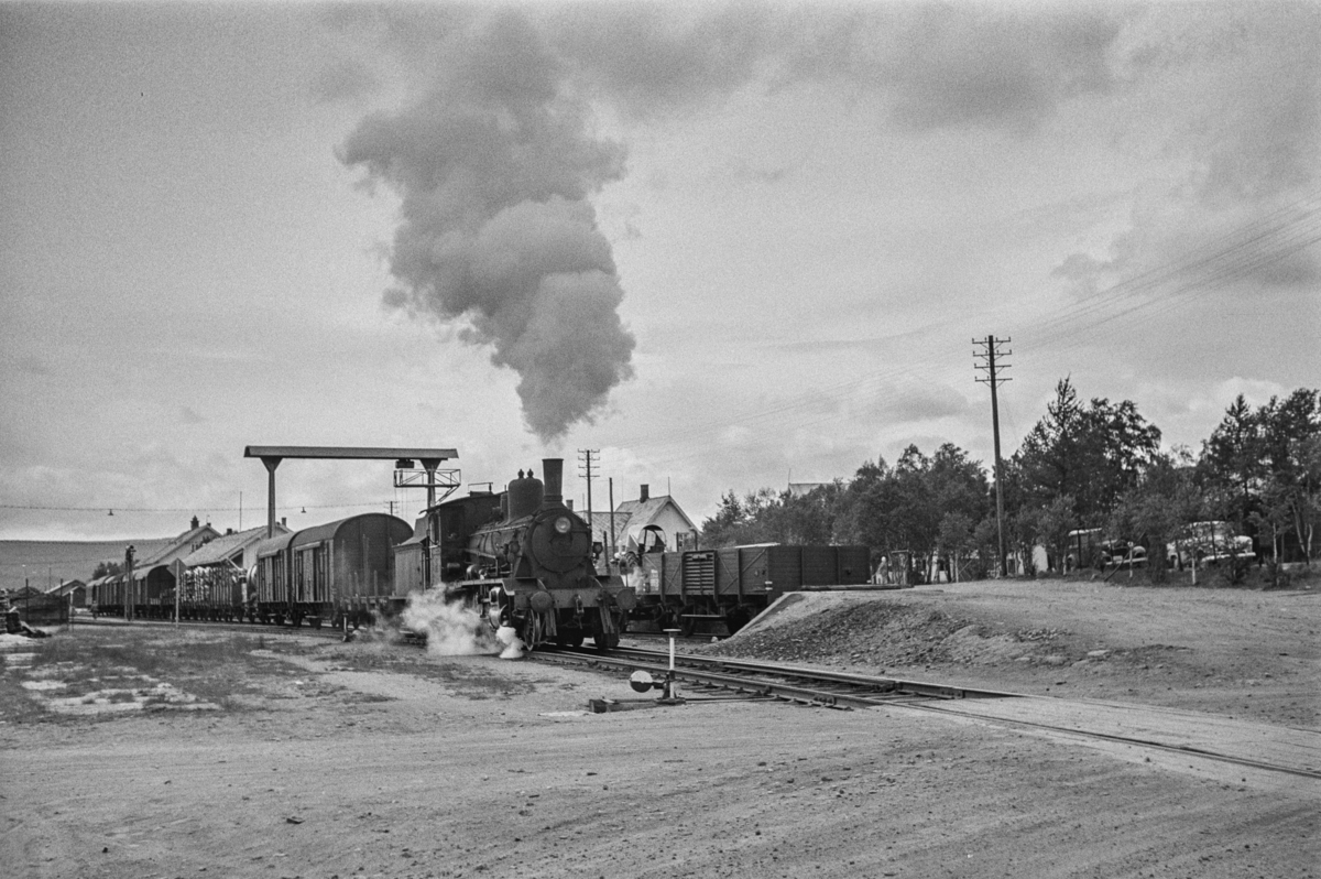 Damplokomotiv type 18c nr. 233 med sydgående godstog på Røros stasjon.