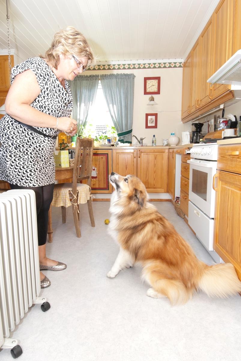 Hunden Romeo sammen med sin eier på kjøkkenet.