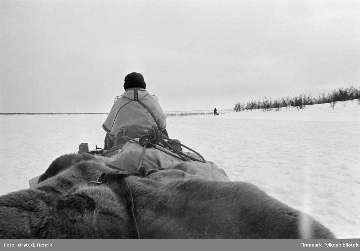 """Postfører Mathis Mathisen Buljo, bedre kjent som """"Post-Mathis"""" i samiske kretser, fotografert på snøskuteren ute på Finnmarksvidda.   Fotograf Henrik Ørsteds bilder er tatt langs den 30 mil lange postruta som strakk seg fra Mieronjavre poståpneri til Náhpolsáiva, videre til Bavtajohka, innover til øvre Anárjohka nasjonalpark som grenser til Finland – og ruta dekket nærmere 30 reindriftsenheter. Ørsted fulgte «Post-Mathis», Mathis Mathisen Buljo som dekket et imponerende område med omtrent 30.000 dyr og reingjetere som stadig var ute i terrenget og i forflytning. Dette var landets lengste postrute og postlevering under krevende vær- og føreforhold var beregnet til 2 dager. Bildene gir et unikt innblikk i samisk reindriftskultur på 1970-tallet. Fotograf Henrik Ørsted har donert ca. 1800 negativer og lysbilder til Finnmark Fylkesbibliotek i 2010."""