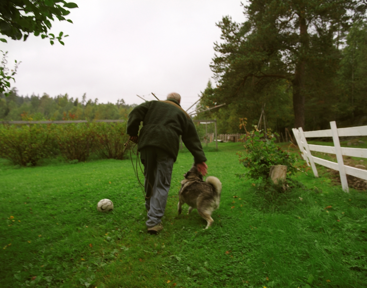En elghund med sin eier på tur.
