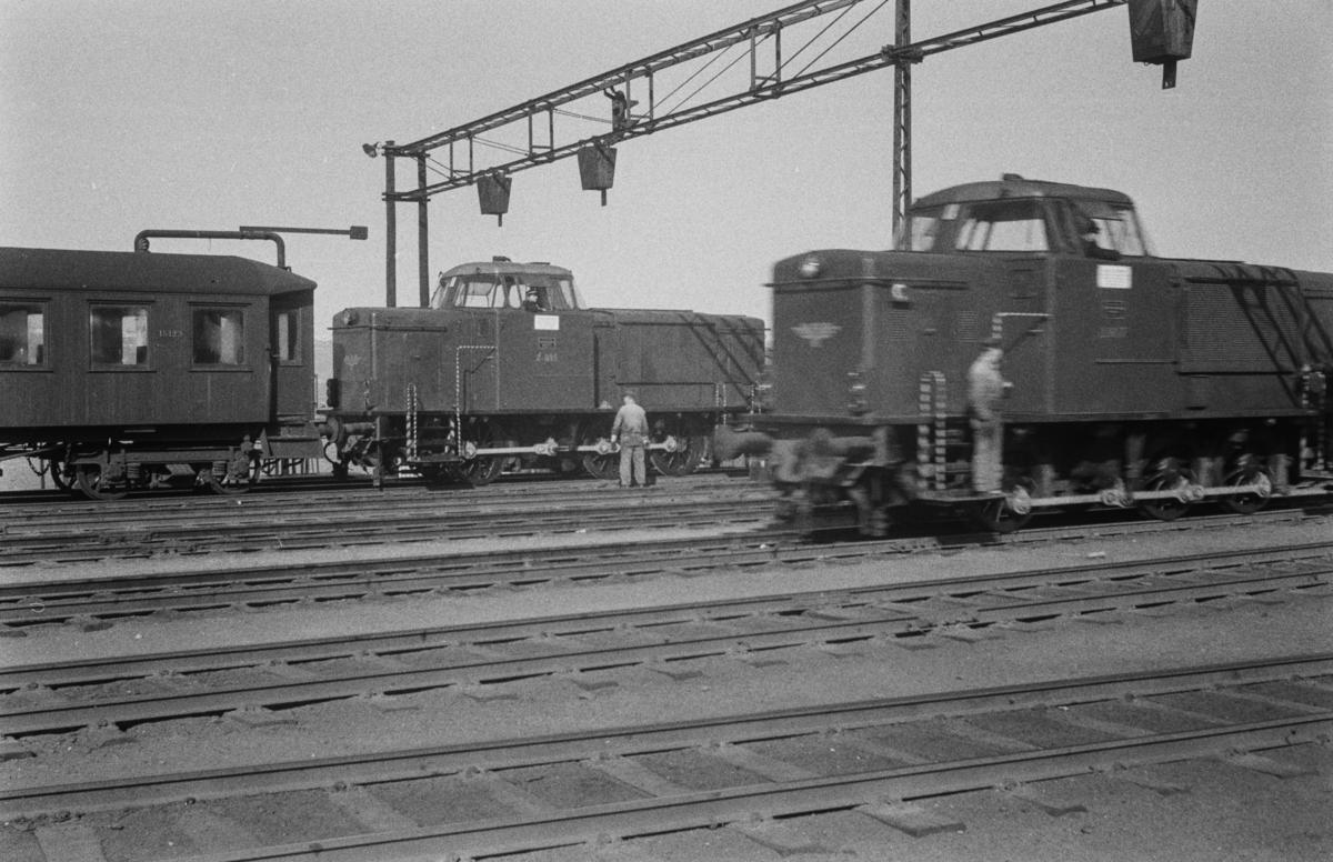 Diesellokomotiver type Di 2 i skiftetjeneste på Trondheim stasjon.