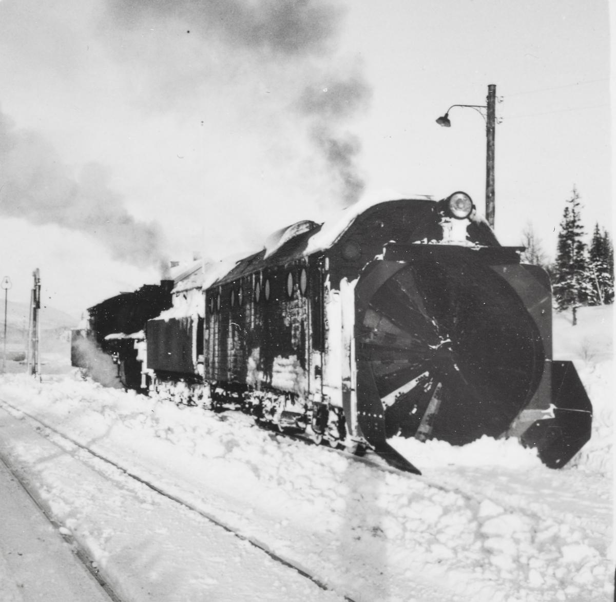 Snøryddingstog på Nordlandsbanen. Nærmest roterende snøplog type III, bak damplokomotiv type 33c nr. 396.