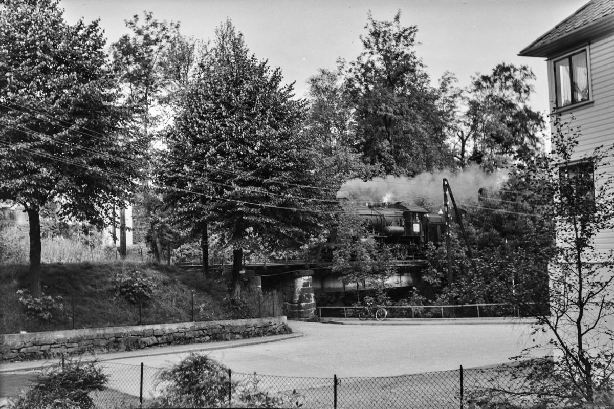 Godstog ved Hop stasjon på Bergensbanen. Toget trekkes av damplokomotiv type 33a nr. 300.