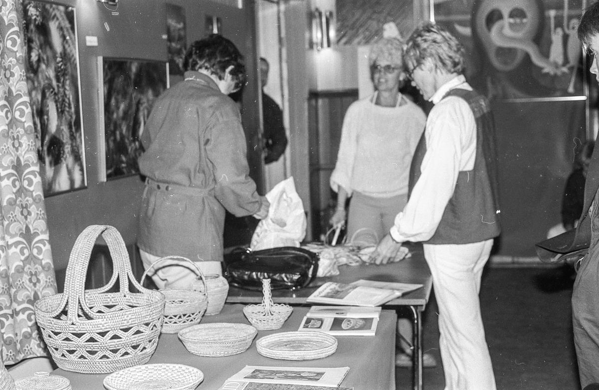 Oppegård-dagene 1985. Jente med fanen til Oppeård janitsjar.