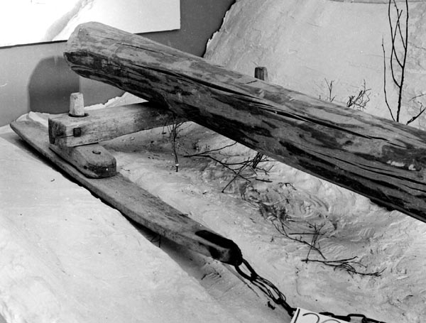 Dubbe fra Andebu. Meiene er laget av ask, mens resten er av lønn. Banken hviler på to 35 cm lange dyner som er festet til meiene med treplugger. Banken er festet med to store kraftige treplugger, som stikker 6 cm opp over banken. Sammenføyningen tillater stor bevegelighet for meiene. Meiespissene har jernbeslag til feste av to sidelenker (40 og 50 cm lange) som ble festet til tømmerlasset.   Dubben er antagelig laget av Ole Ellefsen, Halstvedt. Den er brukt av Samuel Guldbrandsen Gusland (født 1856) fra 1870 og utover.   Olaf Trolldalen har ordnet med overdragelsen og transportert dubben til museet. Dubben er brukt til framkjøring av tømmer.