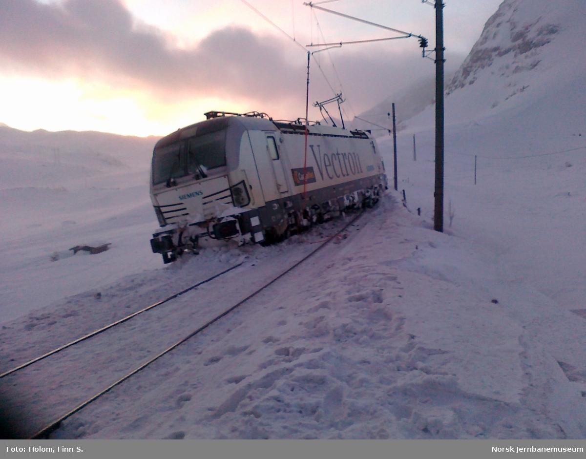 Elektrisk lokomotiv type BR 193 Vectron med godstog 5502 fra Bergen til Oslo har sporet av ved Grytå mellom Finse og Haugastøl.