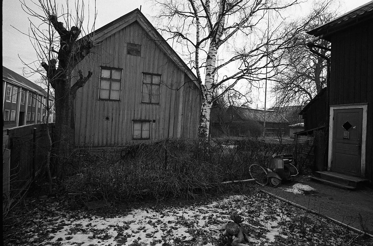 Kvarteret Tullnären. Trähus och trädgårdar. Snö. Mellan Storgatan - Trädgårdsgatan och Herrgårdsgatan - Paradisgränd. Storgatan till vänster i bild.