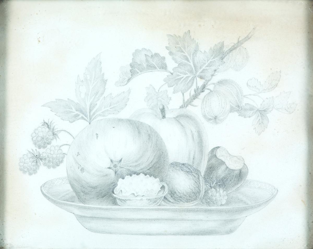 Stilleben (frukt)
