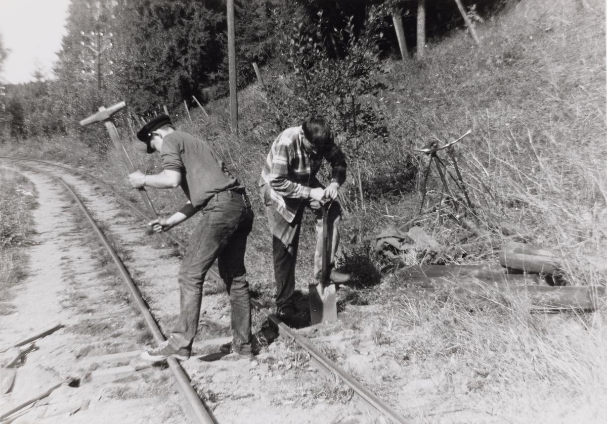 Dugnadsarbeid i Sætrabakken på museumsbanen Urskog-Hølandsbanen