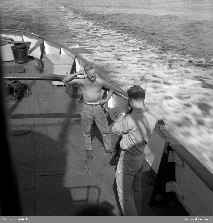 Reportagebilder från hamnen med bland annat SCA:s bogserbåt Axel Enström.
