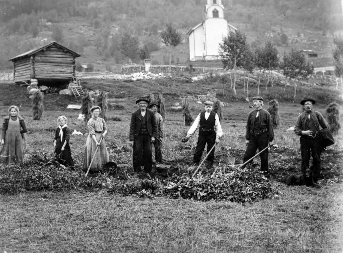 Åmlibilder samlet av Åmli historielag Inhøstingsarbeid på Askland i Gjøvdal