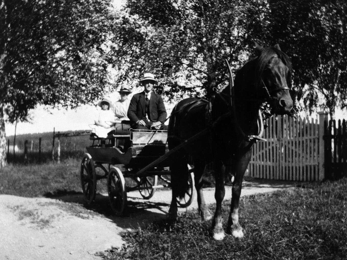 Haugli, Lars Hauglid på kirkevei i fjørvogn (Vogn med bladfjærer)
