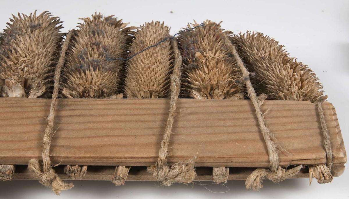 Ett par kardor av fröställningar och trä, hopfästa med en träplugg och snören.