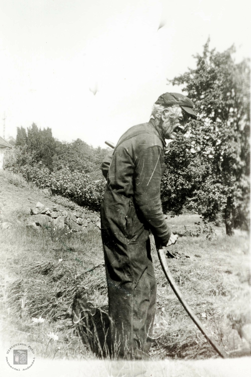 Karl Rugland svinger ljåen.