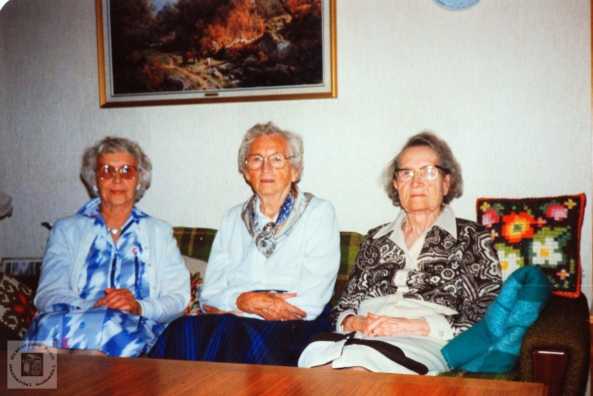 Tre veninner på Austre Sveindal. Grindheim.
