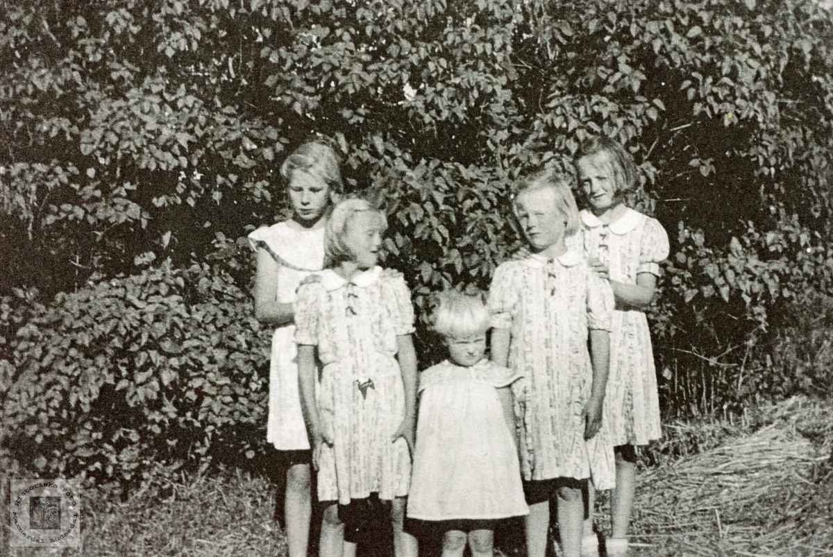 Fem Ubostad jenter myser mot sola. Grindheim Audnedal.