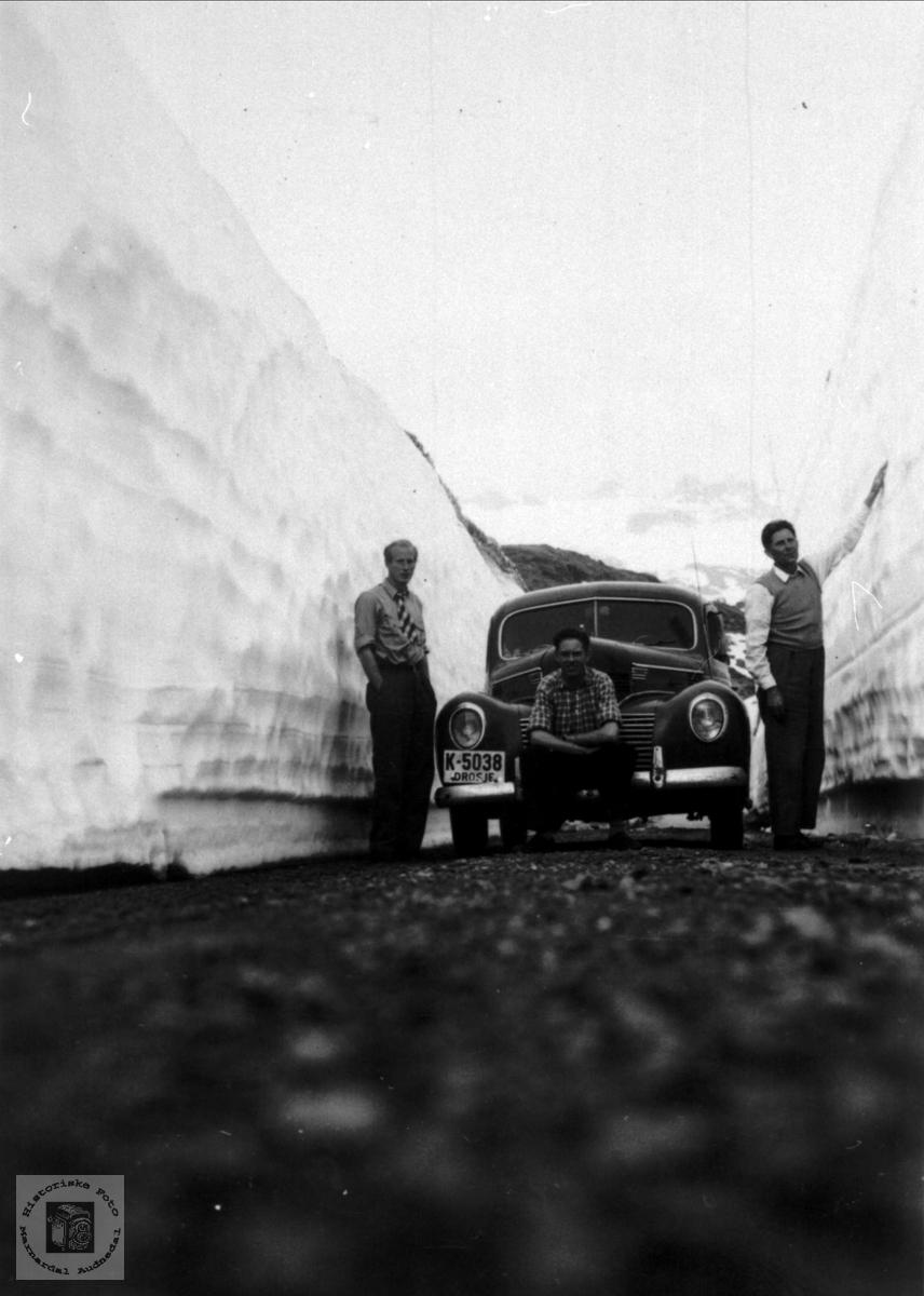 Stor snømengde på Vikafjellet i juni 1953.