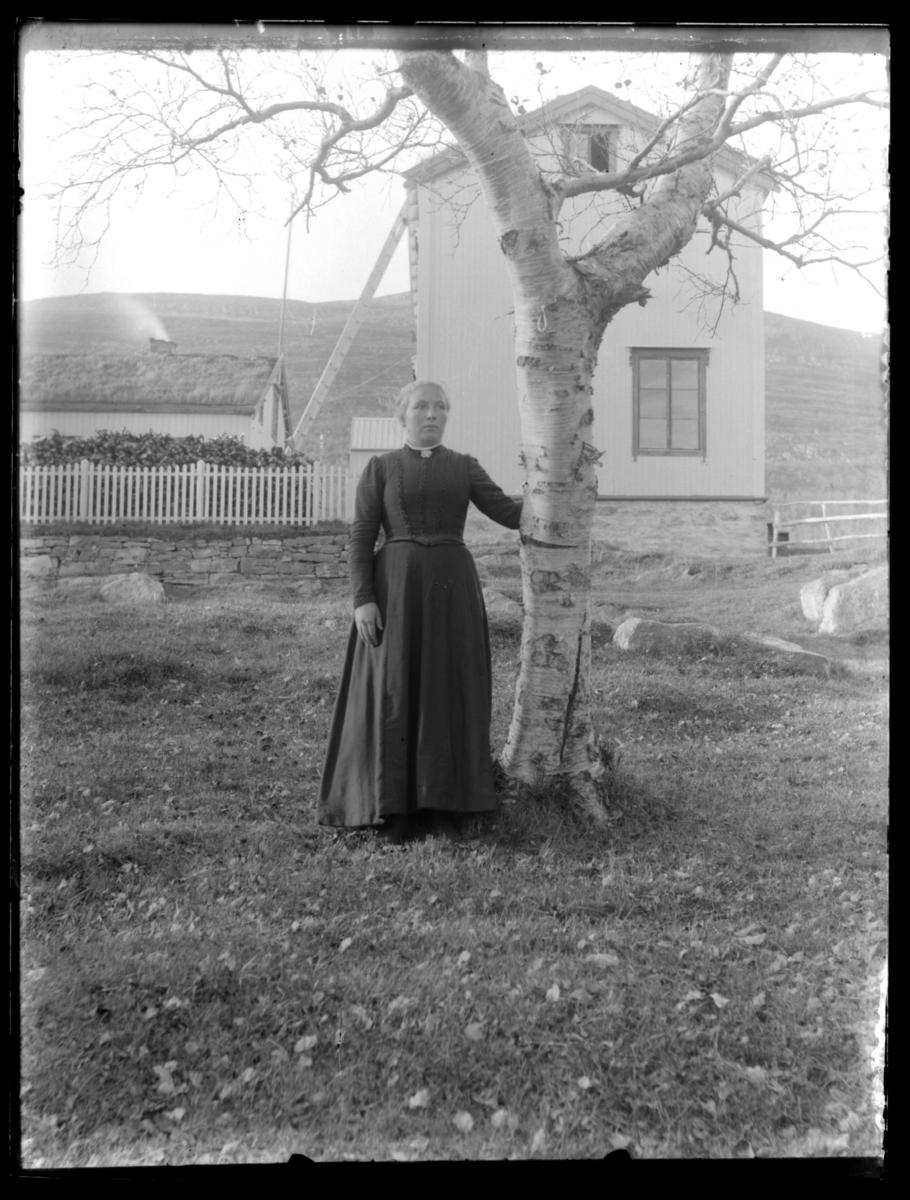 Portrett av ukjent kvinne ved ei bjørk på Langnes i Tana