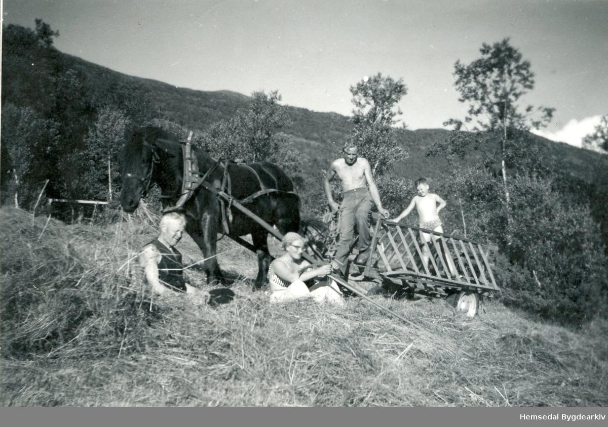 På Heggjislettene i Hemsedal i 1940-åra. Frå venstre: Ingvar Grøndalshaugen og dottera, Borghild. Dei to andre er byfolk.