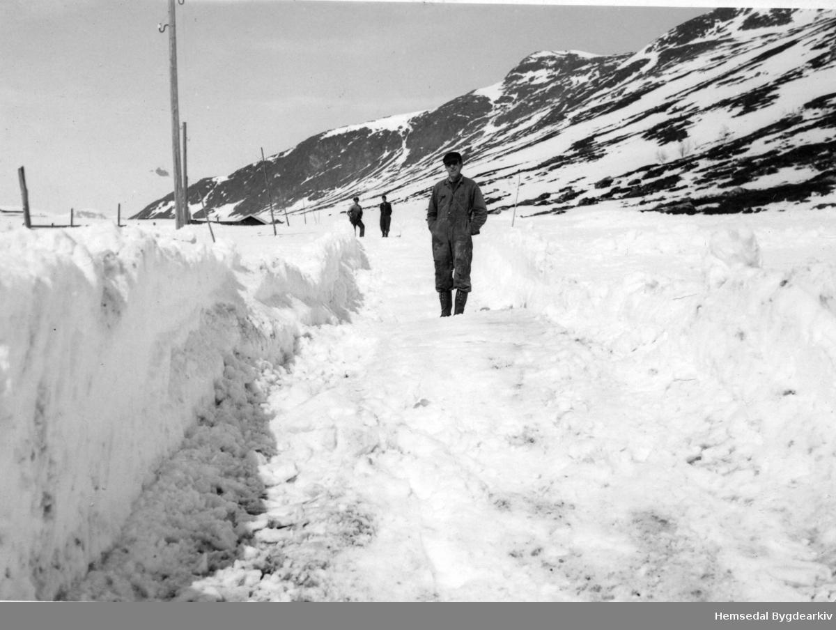 Snøryddingsarbeid på Hemsedalsfjellet  på stigninga opp  mot Slettestølen i 1959. I framgrunnen: Jæger Dokk, fødd 1920.