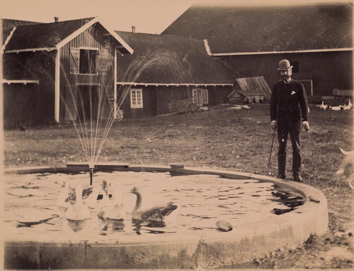Kai Möller på gårdsplassen på Thorsö herregård med fontenen og gjess.