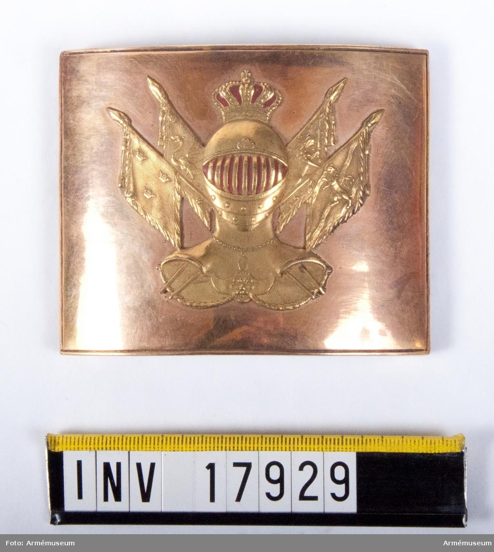Grupp C II. Värjgehängsspänne för officer vid Adelsfaneregementet före 1802.