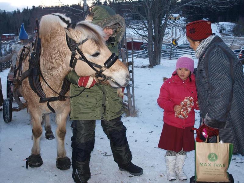 Hest_fjording.jpg