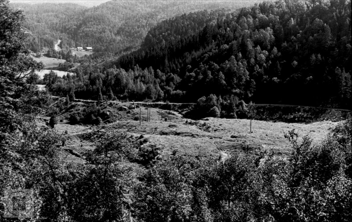 Einhagen under Bjelland prestegård.