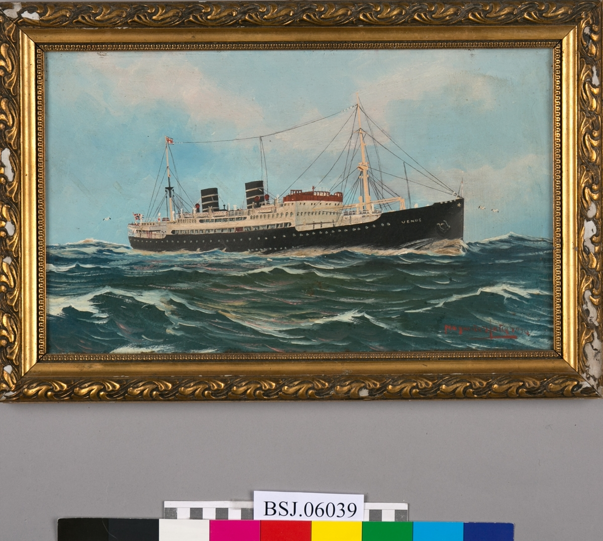 Skipsportrett av MS VENUS på åpent hav. Blå himmel og skyer, bølger med måker. Rederiflagg i bakre mast og norsk flagg i akter.
