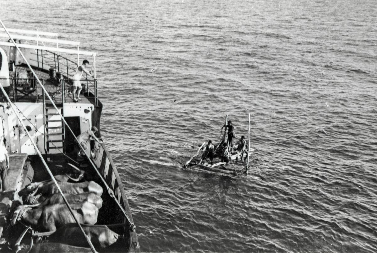 Flåte med fire annamitter/vietnamesere som ble tatt opp av D/S 'Hermod' (b.1925) på reise mellom Bangkok og Hong Kong