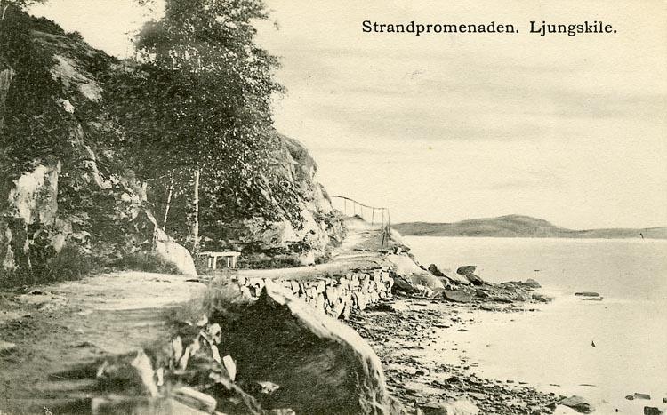 """Enligt Bengt Lundins noteringar: """"Ljungskile. Strandpromenaden till Lyckorna""""."""