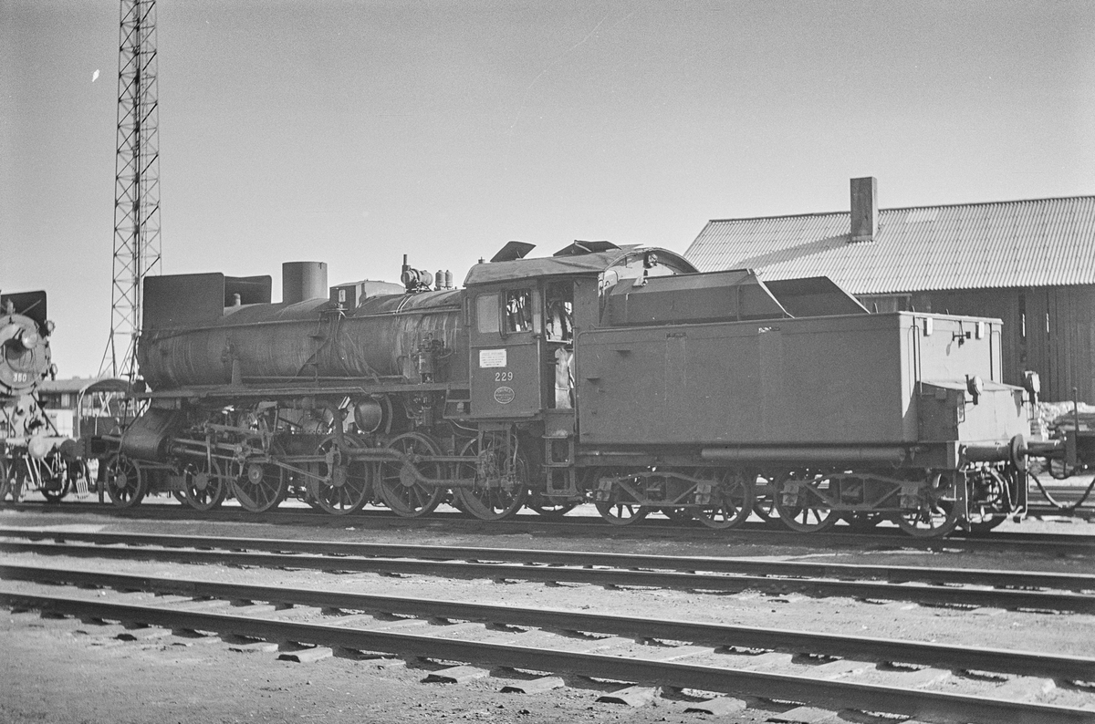 Damplokomotiv type 26b nr. 229 på Marienborg ved Trondheim.