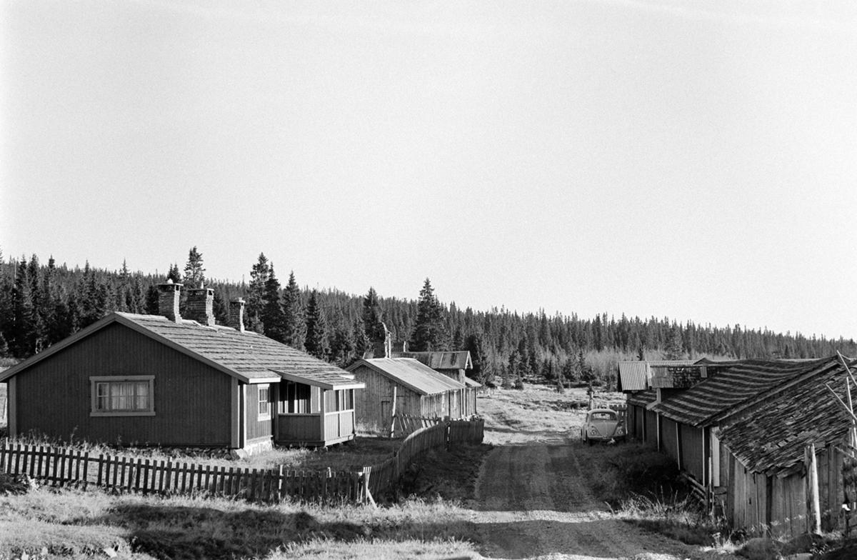 Nysetra, nordre, setermeieri, Philske sameie, seterbruk på Hedmarken,