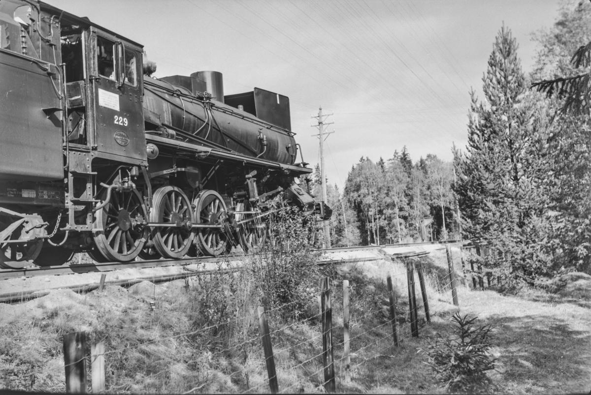 Persontog fra Oslo Ø til Trondheim over Røros, Pt. 301, har stanset utenfor Hanestad stasjon mens kryssende tog kjører inn på stasjonen. Toget trekkes av damplokomotiv type 26b nr. 229.