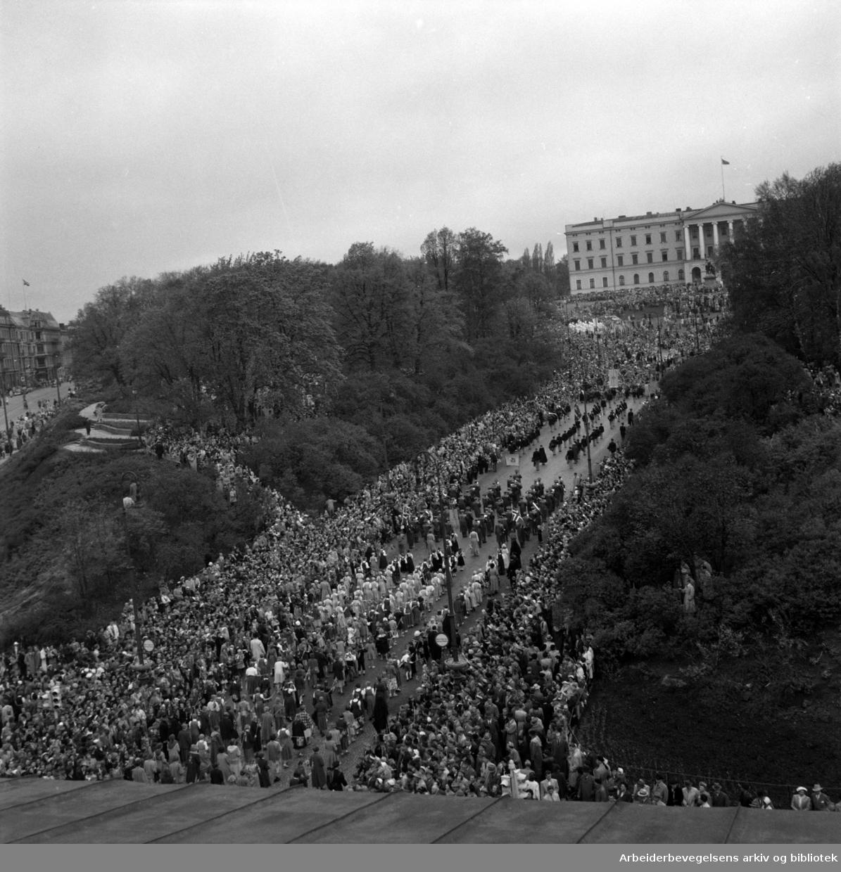 Barnetoget. 17. mai 1953. Utsikt mot Slottsparken og Slottet fra taket på Universitetes vestbygning (Domus Bibliotheca).