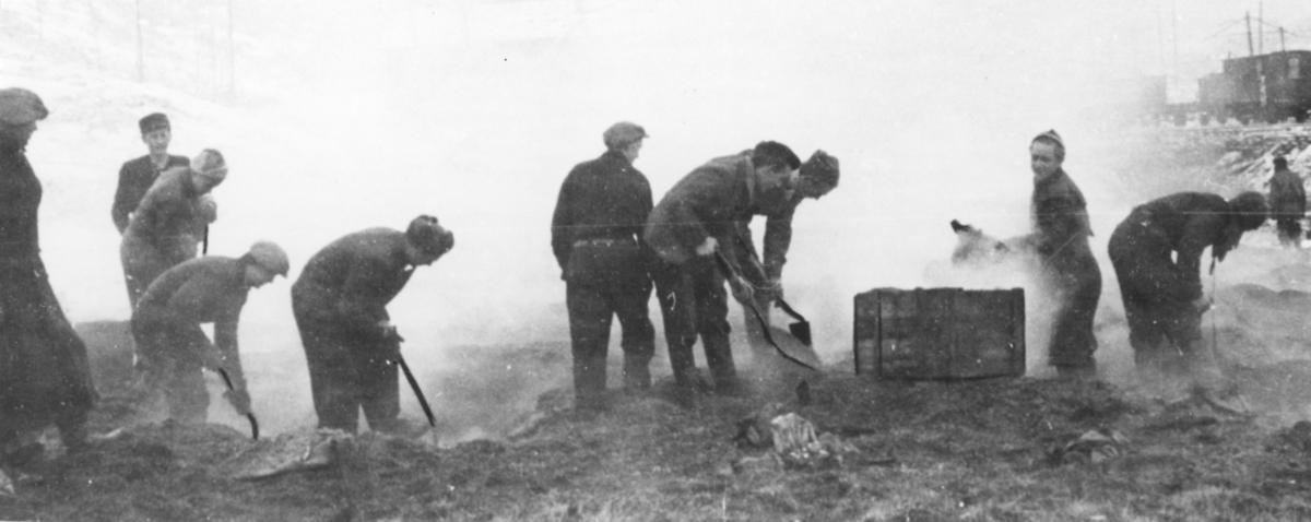 Kirkenes i 1944 etter tysk okkupasjon er over. De frivillige i arbeidet med de brennende kullagrene.