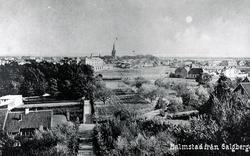 Vy av Halmstad taget från Galgberget i slutet av 1890-talet.