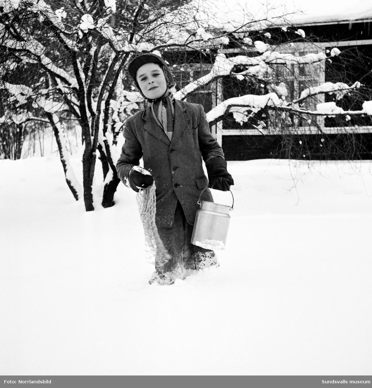 Snövintern 1951. Bilder från olika platser på glada barn som leker i snön. De tre första bilderna är troligen invid gamla Epidemisjukhuset vid Ludvigsbergsvägen, några av bilderna från parken norr om Flickskolan och GA-kyrkan.