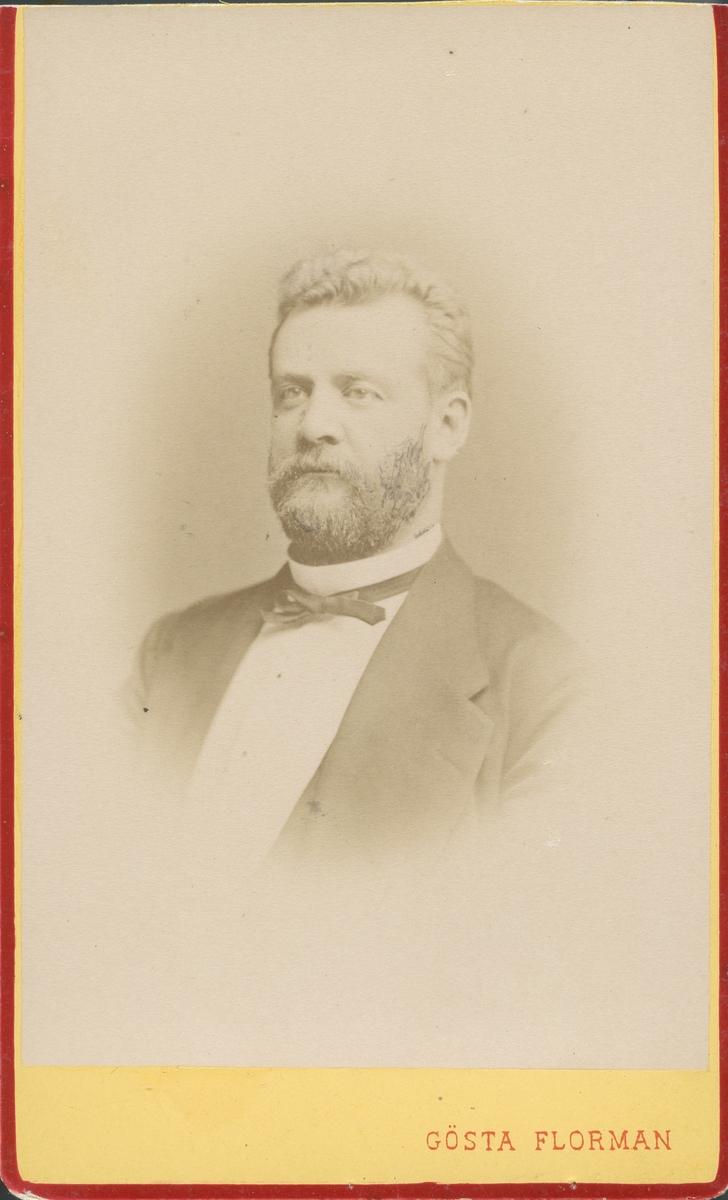 Carl Christoffer Frithiof Mellin, borgmästare i Gävle från 1884(5) till sin död 5/10 1898.