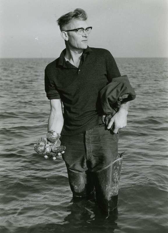 Mann holder opp østers