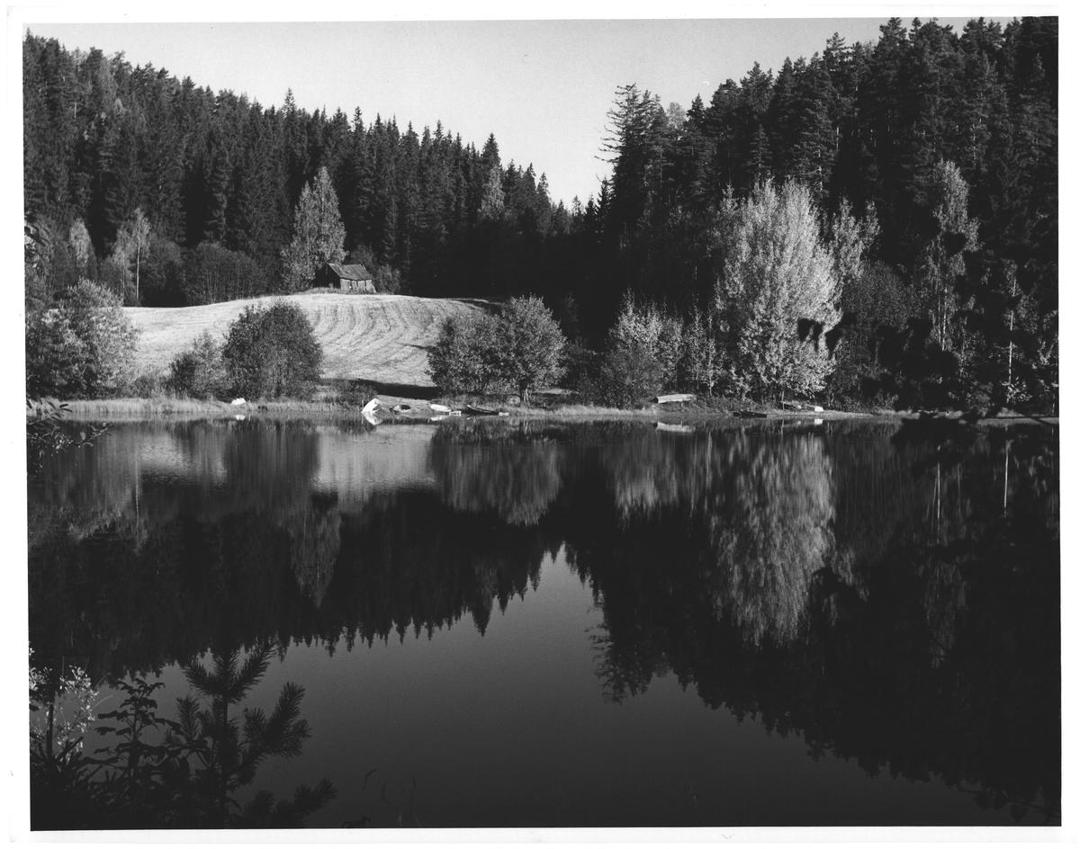 Makalaus høst-speiling i Tunnsjøen. Høland