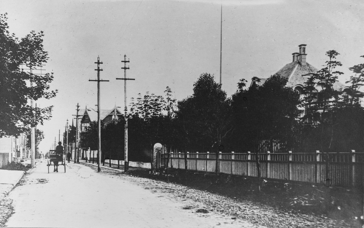 Haraldsgata sett mot nord, ca. 1910.