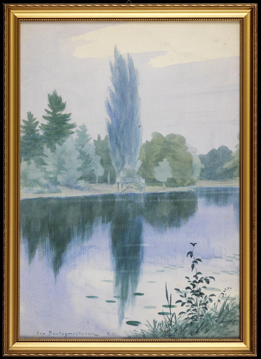Vann hvor de grønne trærne på d.a.siden gjenspeiler seg, lysblå og grå himmel