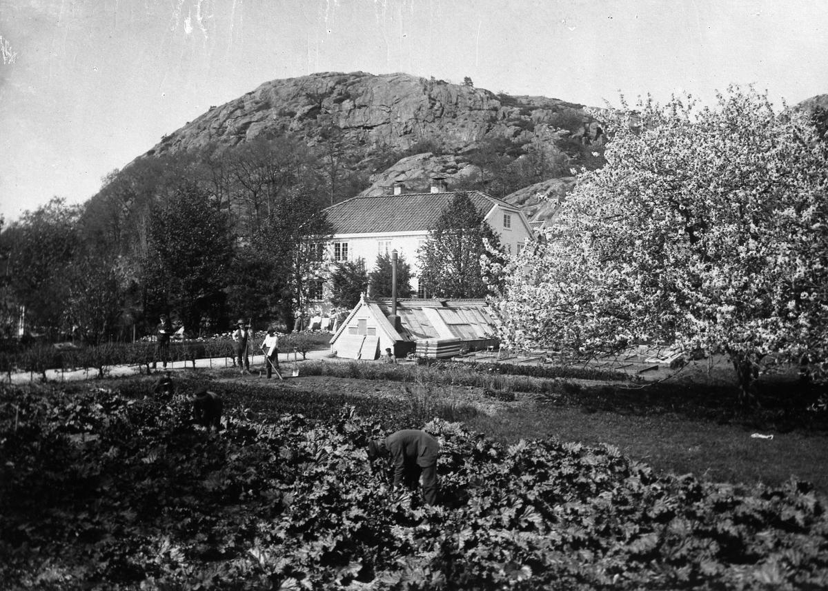 Eiendom med hage og arbeidere Fuhrs eiendom
